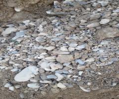 治河工程材料用劣质河沙